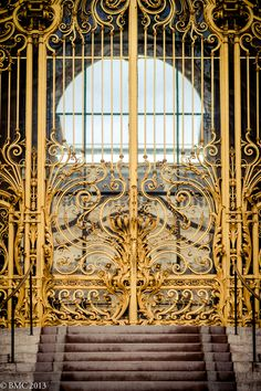 les portes du Petit Palais - Paris  - France Now that's a gate!