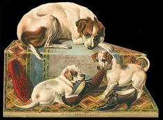 A. Alexander, Shoes,  NYC - Large Dogs Victorian Diecut