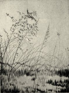 by Lyman Byxbe, etching Landscape Drawings, Landscape Art, Art Drawings, Gravure Illustration, Illustration Art, Encaustic Painting, Painting & Drawing, Painting Digital, Gravure Photo