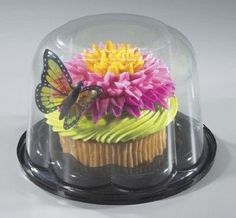 colossal plastic cupcake dome