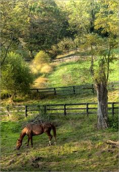 3 Blessed Tips AND Tricks: Fence Diy Deco decorative fence backyard.Wire Fence For Dogs garden fencing animals.Brick Fence With Hedge. Country Charm, Country Life, Country Living, Country Roads, Beautiful Horses, Beautiful Places, Beautiful Pictures, Vie Simple, Country Scenes