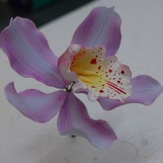 Handmade Purple Cymbidium Orchid by Sugar Paste Flowers, Icing Flowers, Fondant Flowers, Clay Flowers, Edible Flowers, Paper Flowers, Orchid Cake, Fondant Flower Tutorial, Fondant Decorations