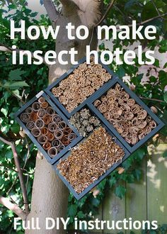 How to make your own insect hotels from recycled materials! A handy step-by-step guide to making bug houses for solitary bees, ladybirds and lacewings