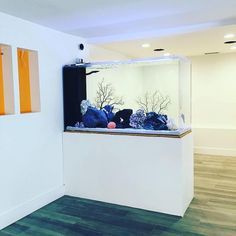 An aquarium is a pleasing method of displaying that you just love nature and that you have a must cope with it. A home aquarium is likely one of the Wall Aquarium, Glass Aquarium, Aquarium Design, Cool Fish Tanks, Saltwater Fish Tanks, Office Room Dividers, Sliding Room Dividers, Support Pour Aquarium, Room Partition Designs