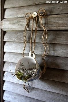 Tea Cup Mini Planters garden gardening decor small diy <---Would work well for herbs methinks.