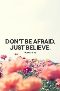 don't be afraid just believe