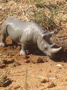 Schleich Rhino 2