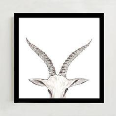 Framed Print - Horns II