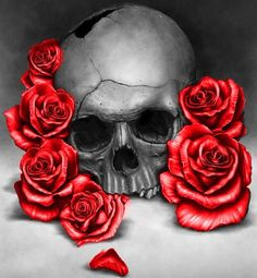 Skull and roses♡