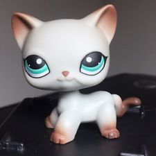 2pcs Kid Toy Collie Dog Littlest Pet Shop Grey Cat Cute LPS#58 #391