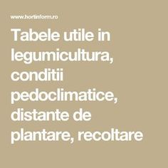 Tabele utile in legumicultura, conditii pedoclimatice, distante de plantare, recoltare Diy And Crafts, Home And Garden, Gardening, Landscaping, Hairstyles, Gardens, Home, Vegetable Gardening, Plant