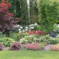 Small Front Yard Landscaping Ideas Design Ideas, Pictures, Remodel, and Decor - page 18