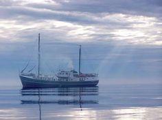 Tramp Steamer Cruises