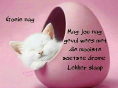Good Night Sleep Tight, Good Morning Good Night, Good Knight, Afrikaanse Quotes, Goeie Nag, Goeie More, Good Night Quotes, Special Quotes, Day Wishes