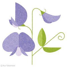武政 諒 Ryo Takemasa | News & Blog : アメリカの雑誌『Martha Stewart Living』で挿絵を担当しました。 花や野菜の種を特集したページに3点描いています。 Spot illustrations for Martha Stewart Living magazine.
