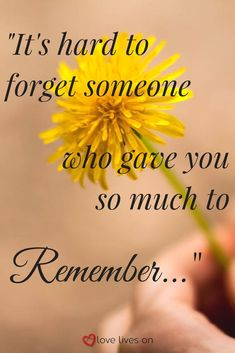 132 Best Memorial Quotes Inspirational Quotes About Life And Death