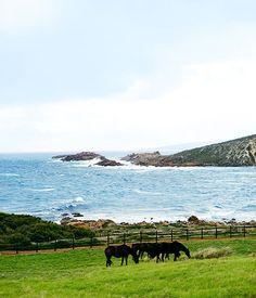 Margaret River travel guide   Western Australia - Gourmet Traveller