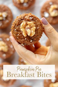 Easy Pumpkin Pie Breakfast Bites are simple to make, requiring basic pantry ingredients and 15 minutes hands on prep. via Sissom Pumpkin Pizza, No Bake Pumpkin Pie, Easy Pumpkin Pie, Pumpkin Recipes, Fall Recipes, Whole Food Recipes, Party Recipes, Brunch Recipes, Granola Bar Recipe Easy
