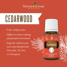 Cedarwood (Cedrus atlantica) has a warm, woodsy aroma that creates a comforting, uplifting experience. Use Cedarwood oil to add its invigorating scent to your life through aromatic and topical uses.