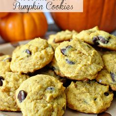 Old Fashioned Pumpkin Chocolate Chip Cookies Recipe