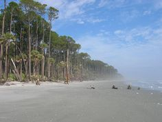 Hunting Island, SC  My favorite beach in SC.  This is a place to go when you need some peace.  Such a remote, tranquil and undeveloped location!
