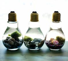Easy DIY Light Bulb Aquarium These easy DIY light bulb aquariums make a great home for tiny Japanese Marimo moss balls and are super cute as homemade Christmas gifts! Want great tips regarding arts and crafts? Head to our great site! Easy Diy Crafts, Cute Crafts, Crafts To Make, Upcycled Crafts, Cute Diys, Homemade Gifts For Friends, Homemade Christmas Gifts, Diy Christmas, Christmas Cards