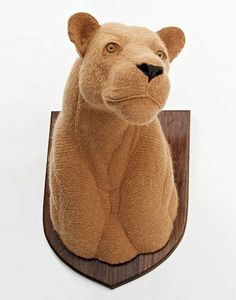 lion's head, from mind-boggling crocheted taxidermy animals