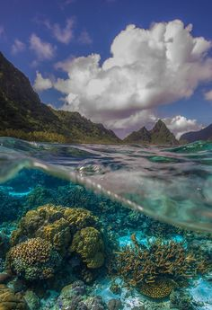 The National Park of American Samoa – a remote park located on four volcanic islands in the South Pacific Ocean.