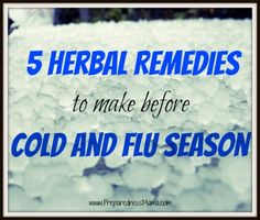 5 Herbal Remedies to Make Before Cold Season | PreparednessMama