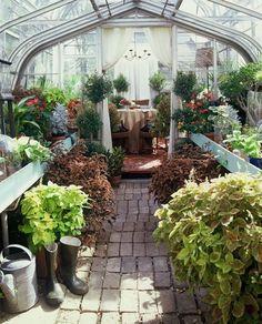 my dream greenhouse.