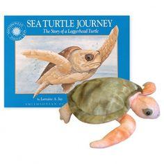 Sea Turtle Journey