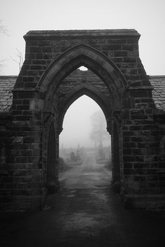Foggy Morning 7 by Olivier Sandri