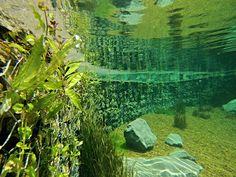Piscinas Biológicas, Piscinas Naturais, Biopiscinas, Ecopiscinas, Piscinas Orgânicas, sinônimos de tranquilidade e bem-estar aquático.