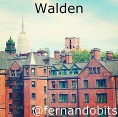 Filtros de Instagram: Filtro Walden