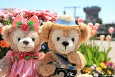 Duffy & Shellie May at Tokyo Disney Sea #Duffy #ShellieMay #DuffyTheDisneyBear #DisneyBearCousins