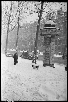 Paris sous la neige, boulevard Beaumarchais (Marcel Bovis, janvier 1947)