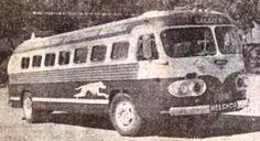 transportes Galgos de Guatemala