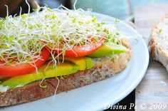 Avocado , Alpha sprouts. Swiss Cheese, Tomato, on Rye .