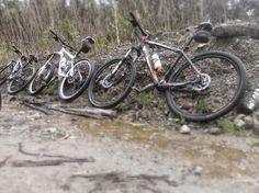 Passeios domingueiros Fazer Login, Bicycle, Vehicles, Sidewalk, Bicycle Kick, Rolling Stock, Bike, Bmx, Vehicle