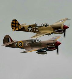 """Curtis P-40 Warhawk, Dubbed """"The Kitty-Hawk"""" by the Brits."""
