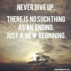 never give up by catalina
