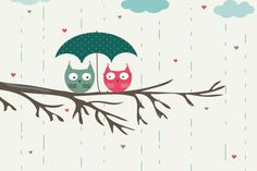Cute colorful owl wallpapers!!:)❤️