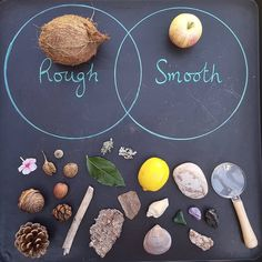 Another great one for collector and transporter kids! A treasure hunt for natural objects, then group sorting and maybe picture making, Andy Goldsworthy-style. Do your kids do much collecting? What do you do with all their loot? Montessori Preschool, Preschool At Home, Preschool Science, Preschool Learning, Teaching, Eyfs Activities, Nursery Activities, Learning Activities, Preschool Activities
