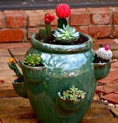 Use a strawberry planter for cactus