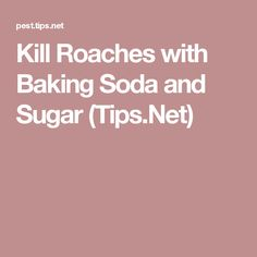 Kill Roaches with Baking Soda and Sugar (Tips.Net)
