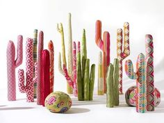Colorful cactuses..