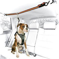 Auto Leash Zip Line Combo