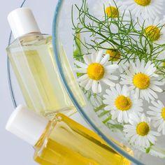 Ein einfaches DIY-Rezept für Kamillen Shampoo aus nur 2 Zutaten - reinigt und pflegt das Haar ohne Silikone