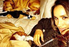"""Meghan Markle la novia del príncipe Harry, """"obligada"""" a renunciar de su perro Bogart"""