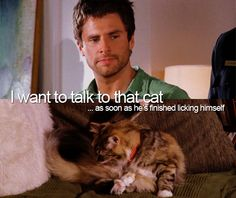 I want to talk to that cat #psych